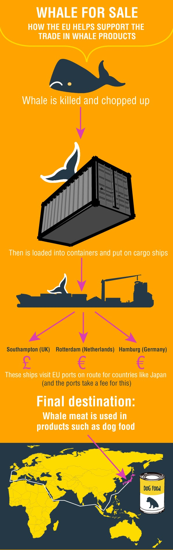 whaling-trade-infographic