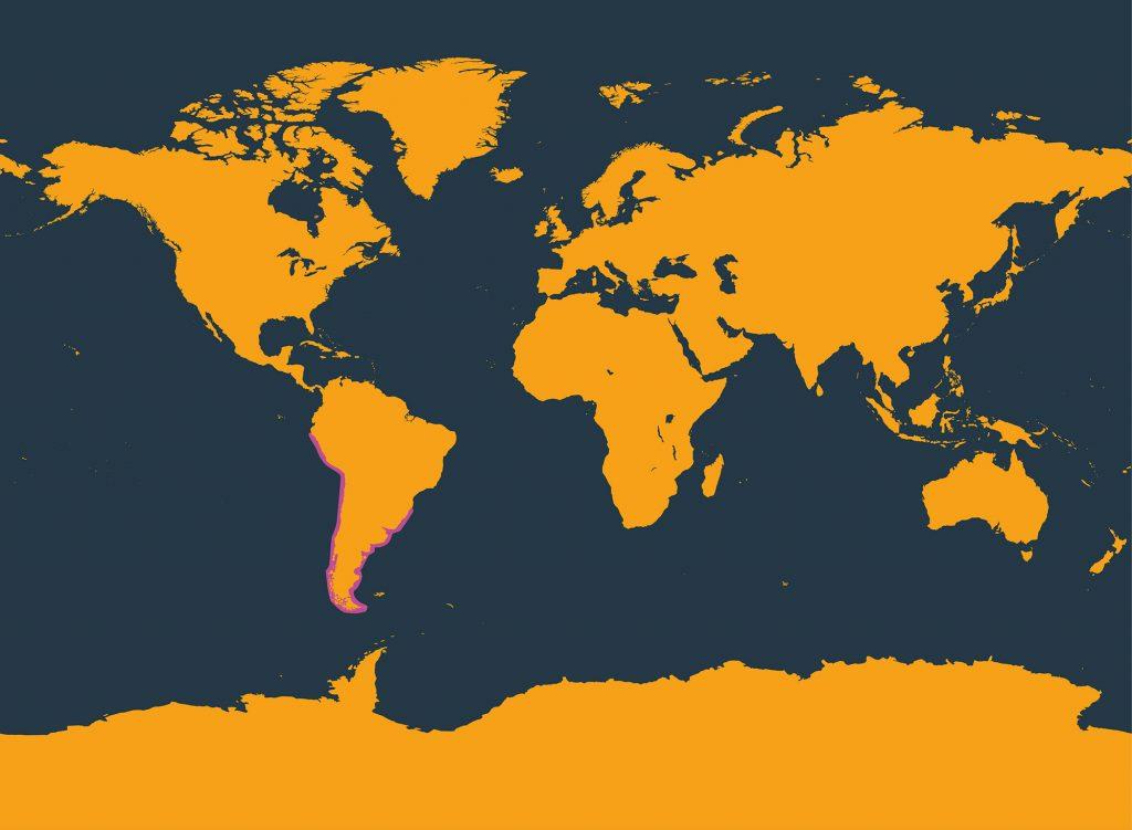 Burmeister's porpoise distribution map