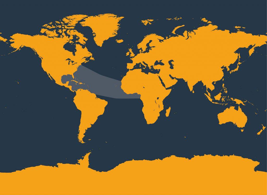 Clymene dolphin distribution map