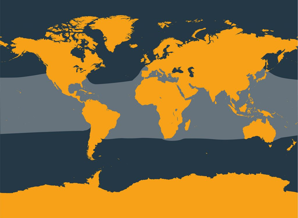 Rough-toothed dolphin distribution map