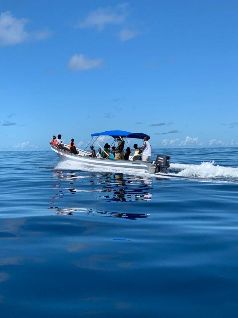 Whalers turn whale watchers