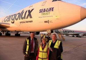 Cargolux aircraft to carry beluga whales